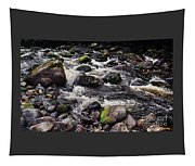 A River In The Wicklow Mountains, Ireland. Vision # 2 Tapestry