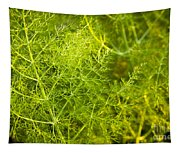 Wild Aniseed Tapestry