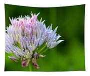 Wild Blue - Chive Blossom Tapestry