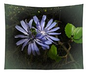 Wild Chickweed 2013 Tapestry