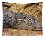 Wild Croc #2 Tapestry