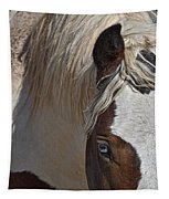 Wild Pinto Tapestry