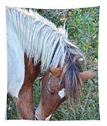 Wild Ponies Of Assateague 21 Tapestry