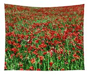 Wild Poppies Growing In A Field, South Tapestry