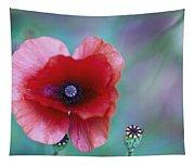 Wild Poppy Tapestry