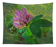 Wild Red Clover Blossom Tapestry