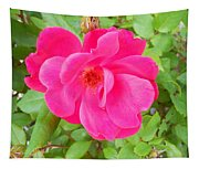 Wild Rose Tapestry