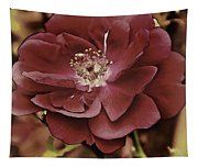 Wild Rose Iv Tapestry