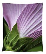 Wild Swamp Rose Mallow Tapestry