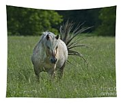 Wild Thing... Tapestry