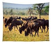 Wildebeests Herd. Gnu On African Savanna Tapestry