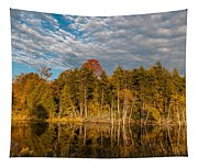Wilderness Pond 2 Tapestry