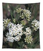Wildflowers - White Yarrow Tapestry