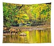 Wildlifes Thirst Tapestry