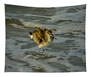 Willet Washing 1 Tapestry