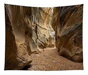 Willis Creek Slot Canyon 1 - Grand Staircase Escalante National Monument Utah Tapestry
