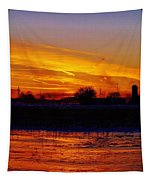 Willow Rd Sunset 2.27.2014 Tapestry