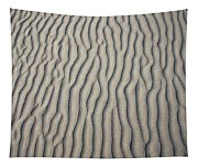 Wind Makes Patterns On The Beach Tapestry