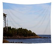 Wind Sculpted Coast Tapestry