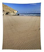 Wind Signals At The Beach Tapestry
