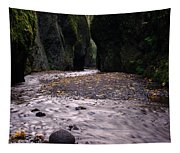 Winding Through Oneonta  Gorge Tapestry