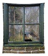 Window At Abbott's Mill Tapestry
