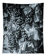 Wine Grapes Bw Tapestry