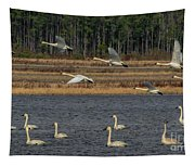 Wings Over Water 2 Tapestry