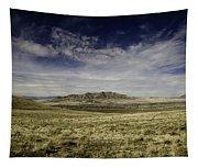 Winnemucca Day 0610 Tapestry