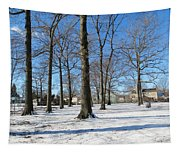 Winter Afternoon Tapestry