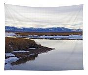 Winter At Ruby Marsh Tapestry