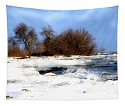 Winter Beauty Tapestry