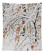 Winter Branches Tapestry