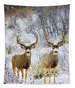 Winter Bucks Tapestry