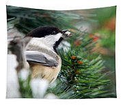 Winter Chickadee With Seed Tapestry