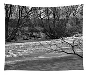 winter day BW-Black and white presentation of Snow on a frozen creek south  Tapestry