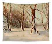 Winter Dream Tapestry