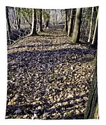 Winter Fall On The Trail Tapestry