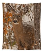 Winter Fawn Tapestry