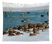 Winter Geese - 05 Tapestry