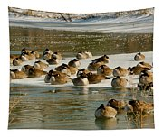 Winter Geese - 06 Tapestry