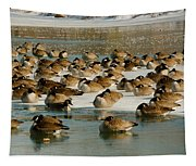 Winter Geese - 07 Tapestry