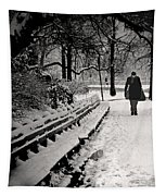 Winter In Central Park Tapestry