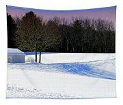 Winter In The Berkshires Tapestry