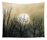 Winter Into Spring Tapestry