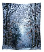 Winter Lane Tapestry