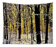 Winter Mood Lighting Tapestry
