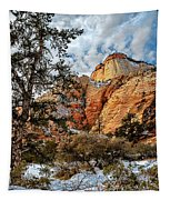 Winter Morning In Zion Tapestry