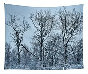 Winter Morning View Tapestry