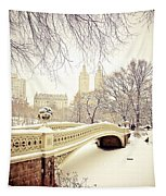 Winter - New York City - Central Park Tapestry by Vivienne Gucwa